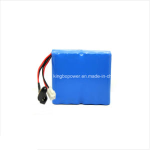 Lithium Ion Battery/Li-ion Battery Pack 18.5V (15.4A)