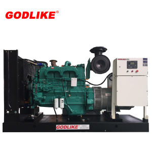 Hot Sale 200kw/250kVA Diesel Electric Generator Sets/Western Engine Cummins with Ce Approved pictures & photos