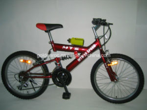 "20"" Steel Frame Mountain Bike (2008) pictures & photos"