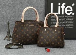 Factory Wholesale Price Stylish Brands, Lady Handbag, Lady Bag pictures & photos