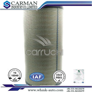 Af25756 Air Filter for Caterpillar Kumatsu Daf Volvo pictures & photos