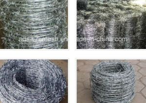 Razor Barbed Wire (single twist and double twist) pictures & photos