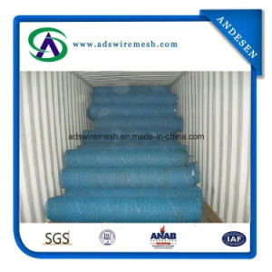 2.0mm 40X60mm Mesh PVC Coated Chicken Wire, Chicken Wire Mesh pictures & photos