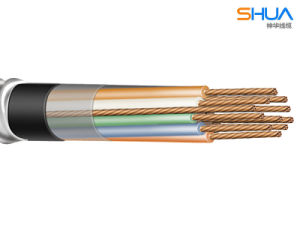 PVC + PVC Interlock Armored Control Cable pictures & photos