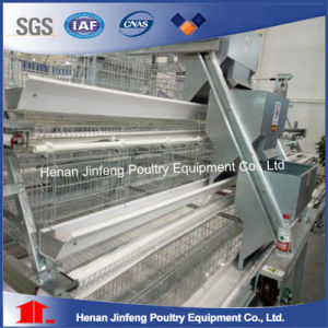 Chicken Farm Poultry Equipment for Layer Broiler Breeding pictures & photos