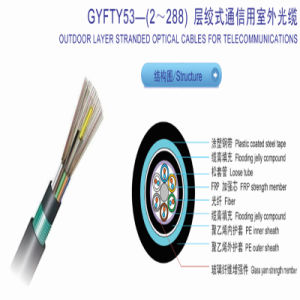 96 Core Outdoor Layer Stranded Optical Fiber Cable with Non-Metallic Strength Member and Steel Tape Armored From China pictures & photos