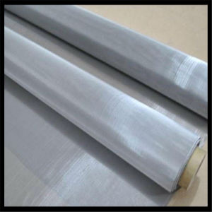 SUS 304 316 Stainless Steel Woven Wire Mesh pictures & photos