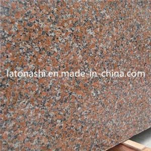 Cheap G562 Maple Red Granite Slab for Paving, Flooring, Countertop pictures & photos