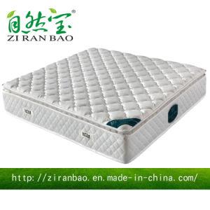 Pure White Super Comfortable Pocket Spring Mattresses (ZRB-811)