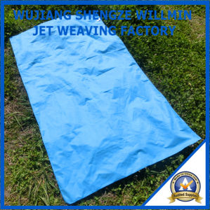 Durable Camping Microfiber Customer Beach Towel pictures & photos
