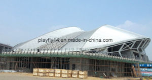 Playfly Water Barrier Protection Roof Film (F-125) pictures & photos