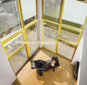 Glass Curtain Wall with Blinds Built Motorized Built in Insulated Glass pictures & photos