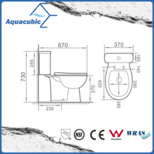 Washdown Two Piece Dual Flush Round Front Bowl Toilet (ACT7035) pictures & photos
