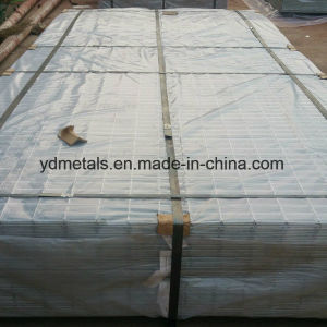 Hot Dipped Galvanized Welded Wire Mesh Panels pictures & photos