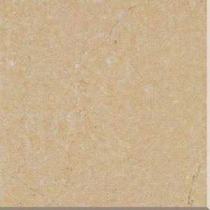 600*600 Cm Interior Rustic Porcelain Tile (V6066) pictures & photos
