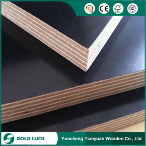 Concrete Formwork Film Faced Plywood for Construction pictures & photos