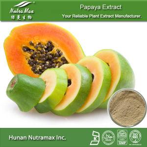 100% Natural Papaya Extract (Ratio: 4: 1, 5: 1 10: 1, 20: 1) --Nutramax Supplier