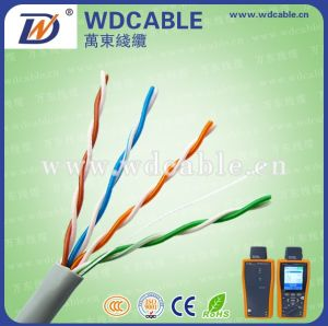 Fluke Passed Cat5e CCAM UTP Network Cable