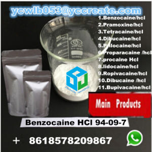 Benzocaine HCl CAS 23239-88-5 Topical Local Anaesthetic Anodyne Pain Reliever