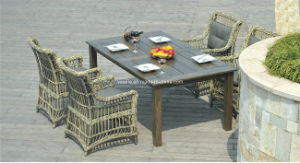 Wicker Outdoor Rattan Garden Furniture pictures & photos