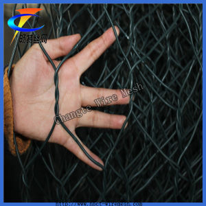 PVC Gabion Wire Mesh for Discount pictures & photos