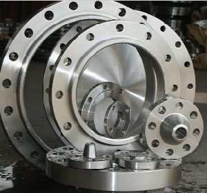 Alloy Steel Large Ring Flange (FF2026) pictures & photos