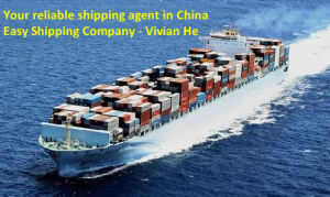 Consolidate / One Stop Sea Freight Service / Best Sea Freight From China to Dubai pictures & photos