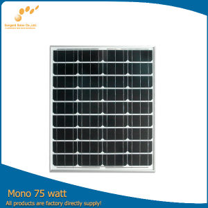 Sungold 75W Photovoltaic Solar Panel with High Efficiency (SGM-75W) pictures & photos
