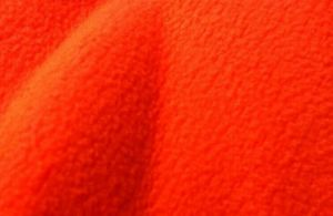 Coral Fleece pictures & photos