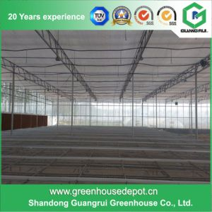 Greenhouse Benches System Seeding Bed System Nursing Bed System pictures & photos