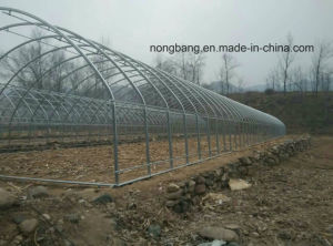 China Wholesale PC Eco-Friendly Greenhouse pictures & photos