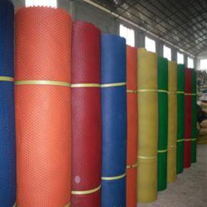 100% Virgin Protective Plastic Netting/Plastic Net pictures & photos