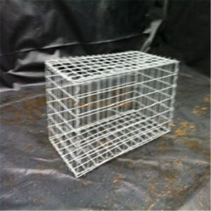 Welded Mesh Galvanized Wire Mesh Gabion pictures & photos