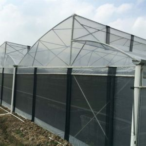 Zigzag Roof Film Greenhouse Fz80f40