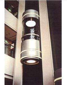 Decoration Cabin of Observation Elevator pictures & photos