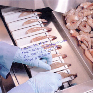 High Capacity Shrimp Peeling Machine for Seafood Processing Factory pictures & photos