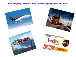 Consolidate Customs Broker in China pictures & photos