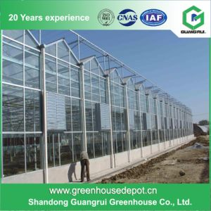 Best Price Greenhouse Manufacturer Economial PC-Sheet Garden Greenhouse pictures & photos