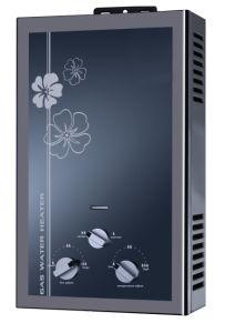 Gas Water Heater (HJ-C8509)