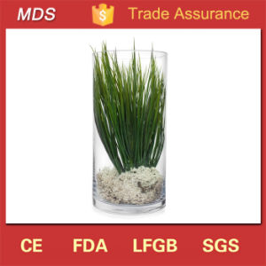 Wholesale Cheap Tall Decoration Flower Glass Vase Display pictures & photos