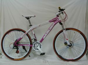 Square Tube Frame Mountain Bike (FP-MTB-A016) pictures & photos