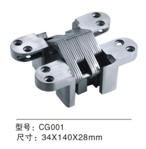High Quality Stainless Steel Concealed Door Hinge (CG001) pictures & photos