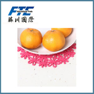Colorful Silicone Dinner Table Mat/Rubber Mat pictures & photos