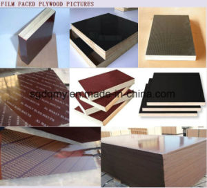 Melamine WBP Glue Film Face Plywood with 18mm Poplar Core pictures & photos