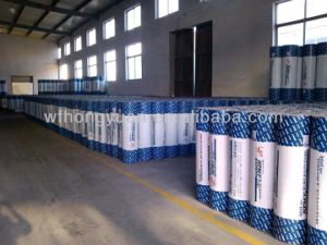 Polyethylene+Polypropylene Synthetic Membrane pictures & photos