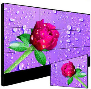 65inch 4k Resolution Innolux Panel LCD Display for Advertising pictures & photos