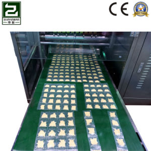 Flour Powder Four-Side Sealing and Multi-Line Packing Machine pictures & photos