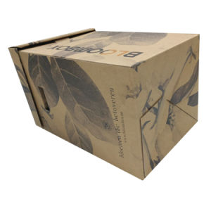 Kraft Printing Flower Packaging Box with Handle pictures & photos