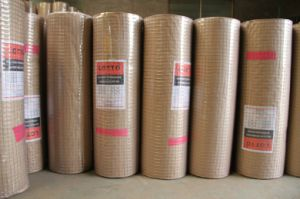 High Quality and Low Price Welded Wire Mesh (manufacturer) pictures & photos