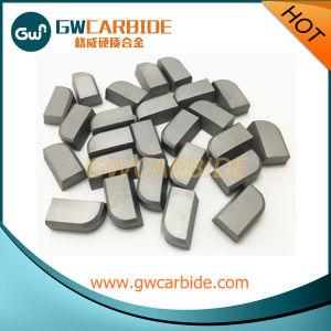 High Quality Tungsten Carbide Brased Tips with Various Size pictures & photos